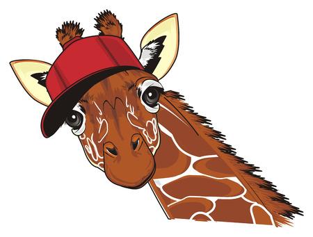 funny giraffe in red cap