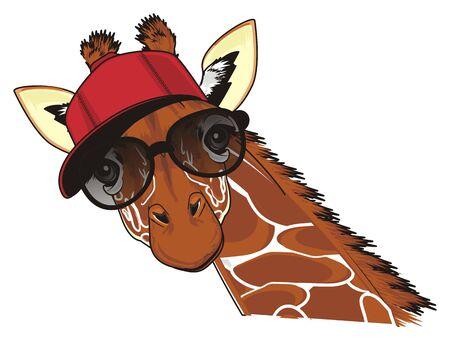 trendy giraffe in sunglasses and cap Stock Photo