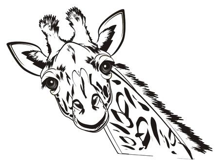 kleurende grappige giraf Stockfoto
