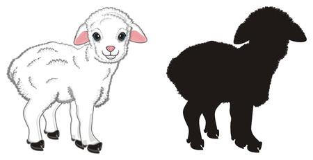 coloredlamb stand with solid black lamb Standard-Bild