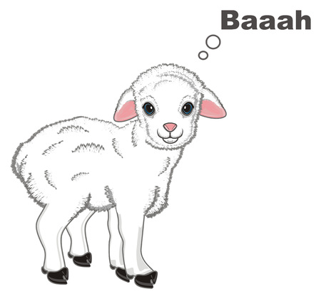 little lamb say baaah