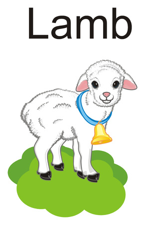 lamb with a ball stand on the grass