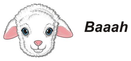 muzzle of lamb and word baaah