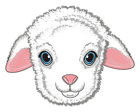 cute snout of lamb