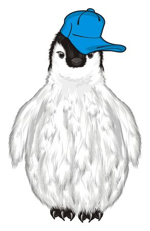 penguin in blue cap Stock Photo