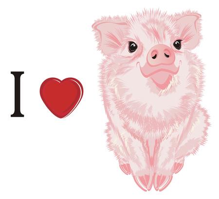 i love pig Standard-Bild
