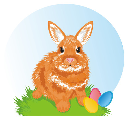 bunny with eggs and easter time