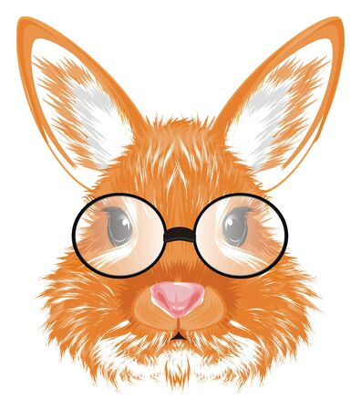 snout of bunny in black glasses