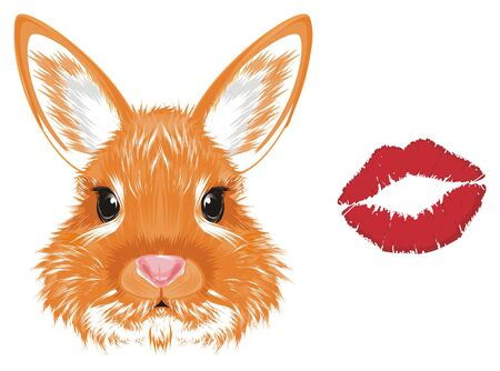 muzzle of bunny and red kiss Stock Photo