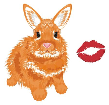 bunny and red kiss