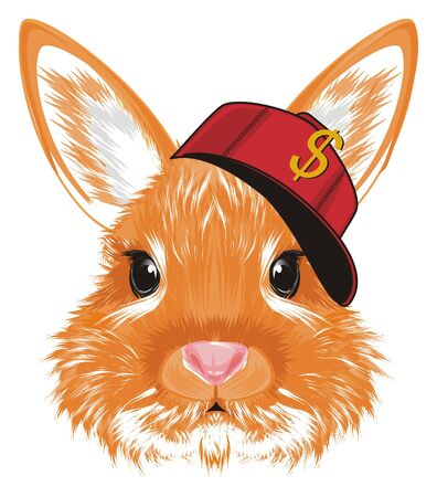 face of bunny