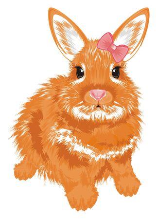 funny bunny girl sit Stock Photo