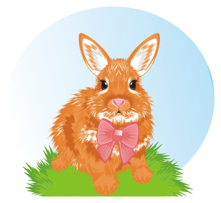 Bunny with a bow and spring Stock Photo