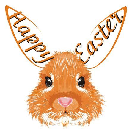 bunny adn easter holiday Stockfoto