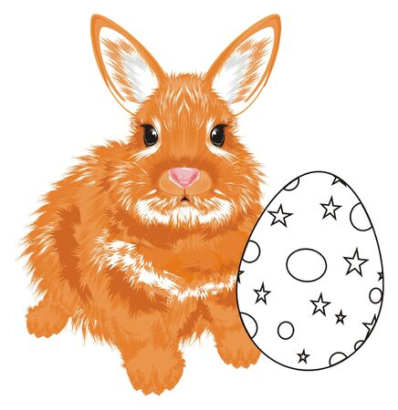Bunny sit with not colored egg