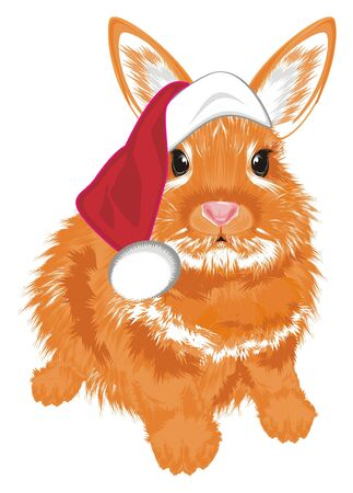 Bunny in red holiday hat Stock Photo