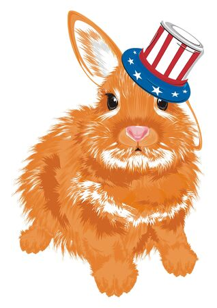 Bunny in hat with USA flag Stock Photo