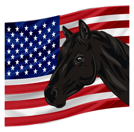 head of horse and USA flag