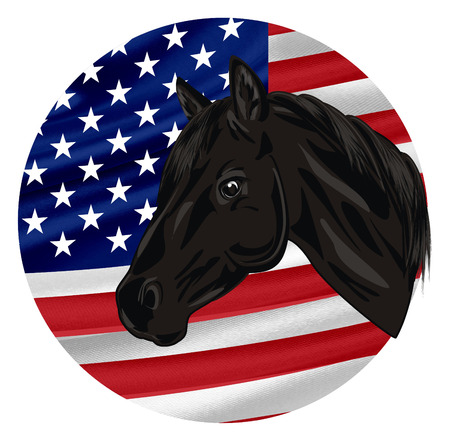 head of horse and round flag
