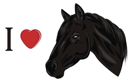 i love black horse