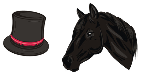 head of horse and black hat