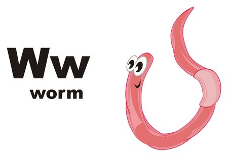 worm and abc