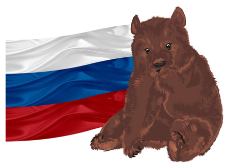 brown bear with Russian flag