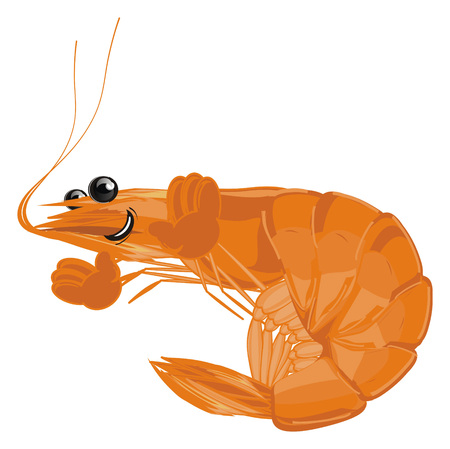 funny shrimp with hands Stock Photo