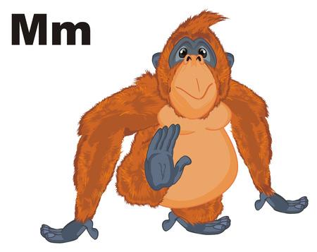 orangutan and letters m
