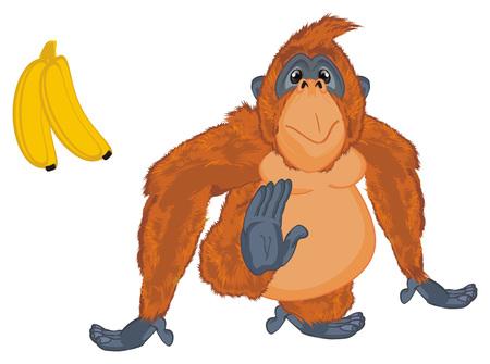 orangutan and banana