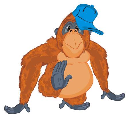 orangutan in blue cap