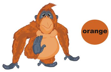 orangutan is orange