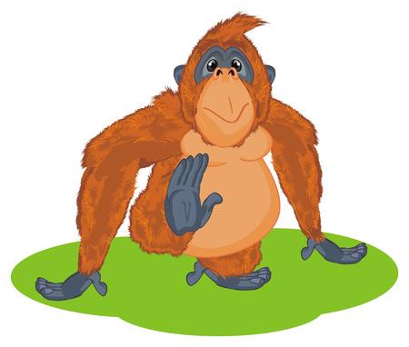 orangutan on green grass