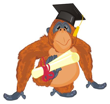 orangutan ready to study