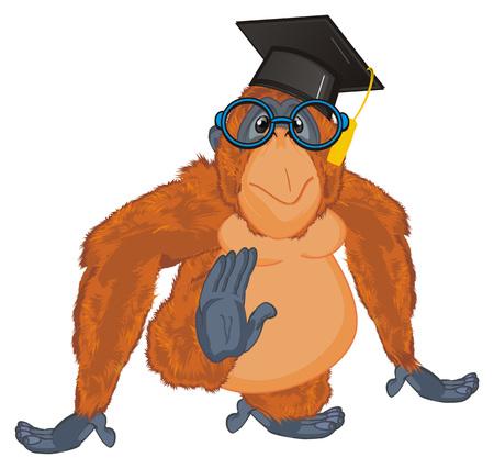 orangutan and education