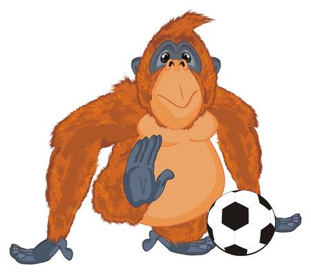 orangutan play to football