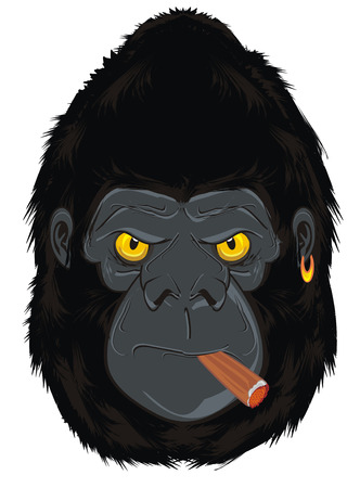 face of gorilla with cigar