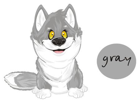 wolf is gray 版權商用圖片