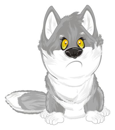 sad wolf sit