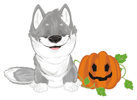 sleeping wolf with pumpkin