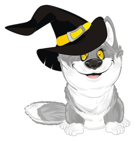 wolf in hat