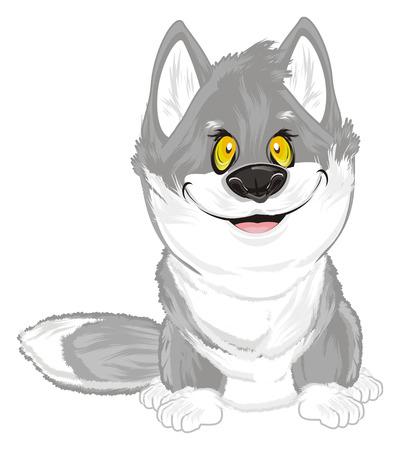 happy wolf sit Foto de archivo - 115997718