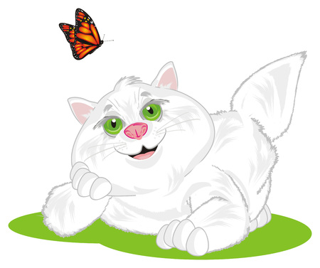 fat cat with butterfly Фото со стока