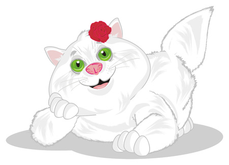 fat cat with red rose