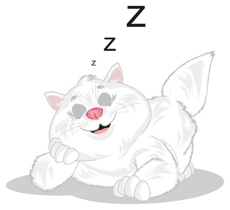 sleeping cat wtih letters z