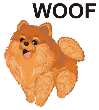 spitz say woof