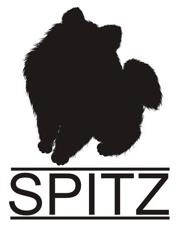 solid black shadow of spitz Banco de Imagens