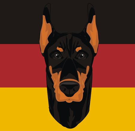 Germany and doberman