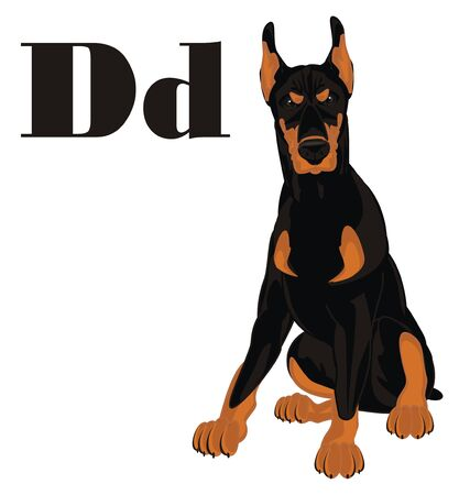 evil doberman and letters d