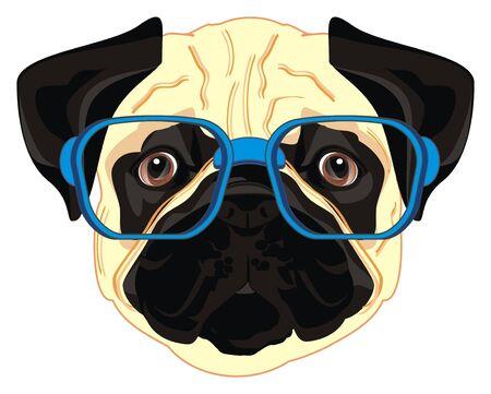 mopshond in blauwe bril Stockfoto